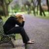 Що робити, коли депресія прийшла на поріг?