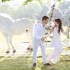 До чого сниться білий кінь, які події наяву несе такий сон