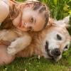 Як пережити смерть домашньої тварини і перестати постійно думати про нього