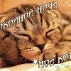 Вірші смс коханому на добраніч. Добрих і хороших снів улюблений смс