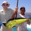 Корисні властивості риби дорадо, її застосування в дієтичному харчуванні